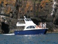 Shearwater under the cliffs of Cilan
