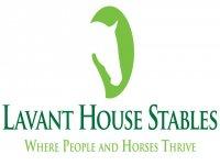 Lavant House Stables