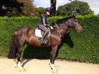 Open Hacking at Lavant House Stables