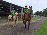 Hacking in pairs at Lavant House Stables