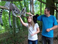 Be a zoo keeper experience
