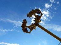 Adrenalin pumping rides!