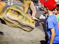 Petting the dinosaurs