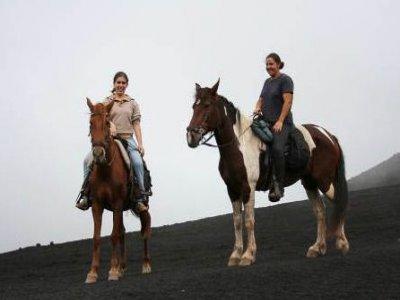 Horseback ride Icod de los Vinos, 7 hours