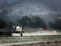 Beautiful landing!
