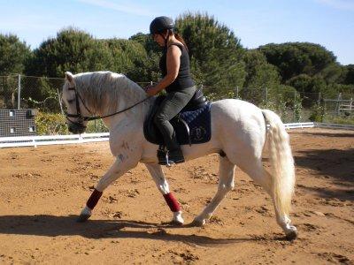 Equestrian Week in Conil de la Frontera