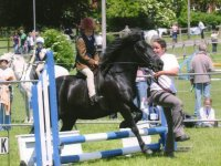 Warminster Saddle Club Summer Show