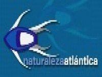 Naturaleza Atlantica Despedidas de Soltero