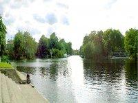Weybridge Rivers