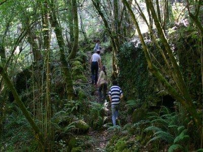 Hiking in galiñeiro 3 hrs