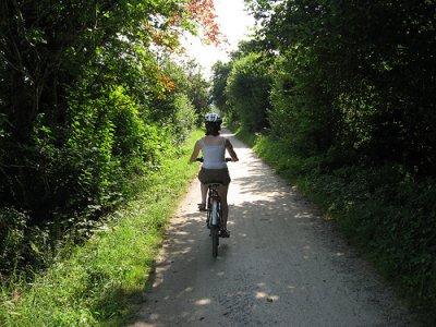 Discovery Travel Mountain Biking