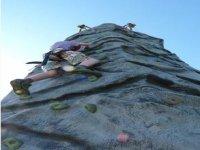 Brilliant climbing wall