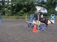 Showjumping courses at Albourne Equestrian Centre