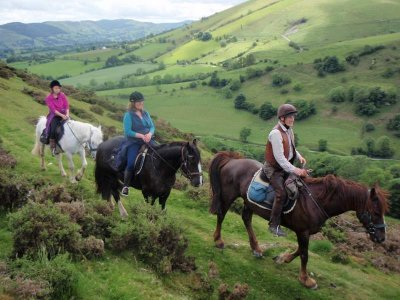 Springhill Horse Riding Stables