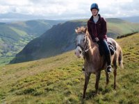 Trail rides and hacking Springhill Horse Riding Stables