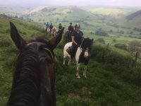 Hacking with Springhill Horse Riding Stables