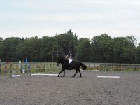 Hacking with bcequestrian