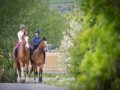 Cimla Equestrian Holiday Centre