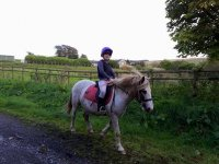 hacking with Cimla Equestrian Holiday Centre