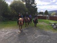 Dressage with Ellesmere Riding Centre