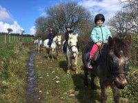 Trekking at Marros Riding Centre