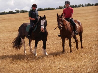 Monach Farm Riding Stables
