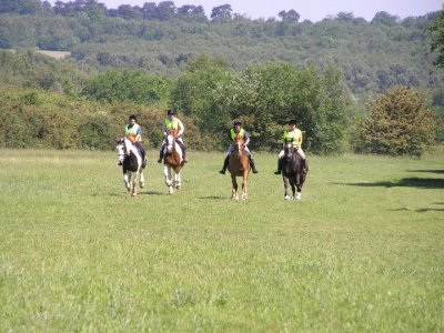 Orchard Cottage Riding Stables
