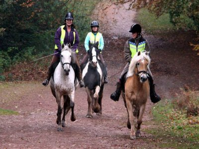 North Worcestershire Equestrian Centre