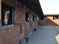 Our stables