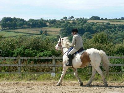 Wales Riding Holidays