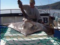 Oban Sea Fishing
