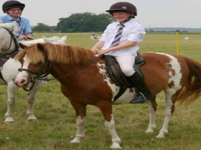 Woodlands Riding Stables & Livery Yard
