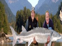 Anglers Worl of Fish
