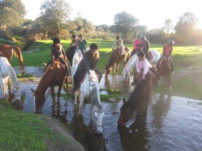 5-day Horse Riding Camp + Activities, Cáceres