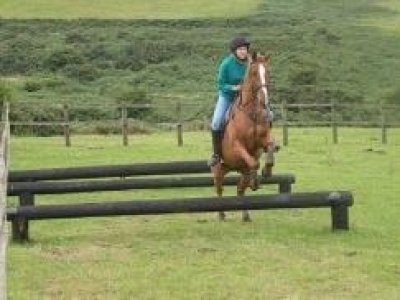 Children's Horse Riding Holidays