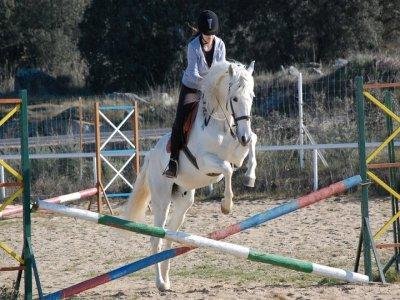 4-class horse riding voucher+1 free class, Cáceres