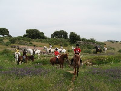 Horse ride in Cáceres 4 people + 1 for free