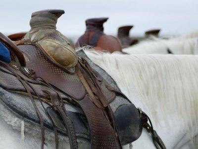 Horse-riding along Rialp, 2 hours
