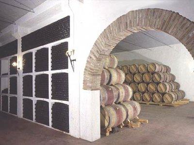 Vinícola de Navarra