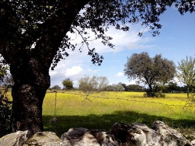 Hiking route and 2 nights in Casar de Cáceres