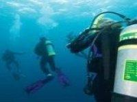 Diving group underwater