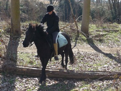 1-week intensive horse riding course in Huerta