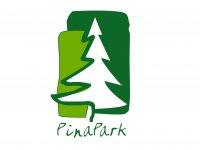 Pinapark Campamentos Multiaventura