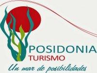 Posidonia turismo Paseos en Barco