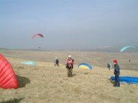 paragliding near Larne