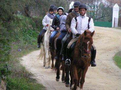 Horse riding tour + archery