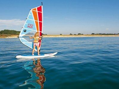 Geckos Surf & Sup
