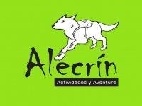Alecrín Actividades y Aventura Kayaks