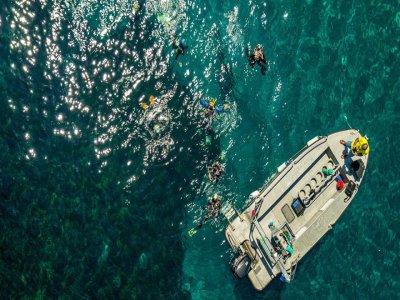 PADI Open Water Diver Course in San José