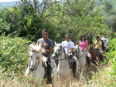 Horse riding in San Martín de Valdeiglesias - 2h